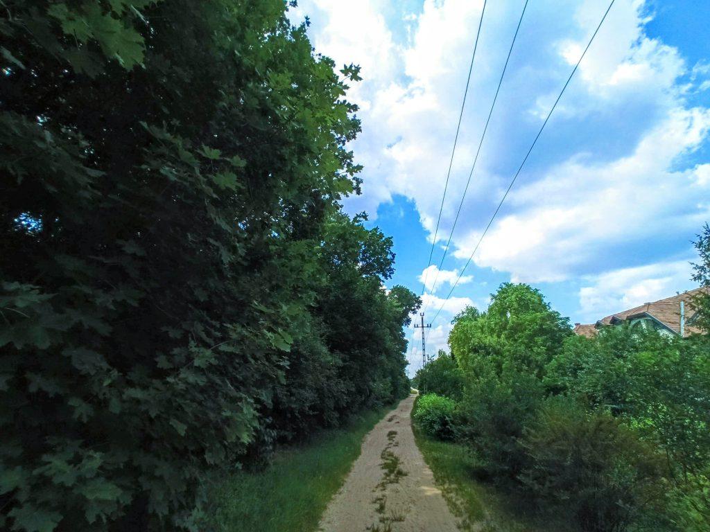 Flór Ferenc utca